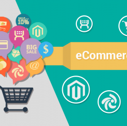 Customization Software A Perfect Tool For E-store Owners to Make Big Bucks